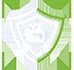 Data Security icon White